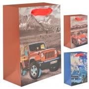 CA-S Пакет подарочный бумажный 18*23*10см